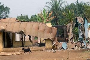Cameroun-Crise anglophone : escalade vers une guère de basse intensité.