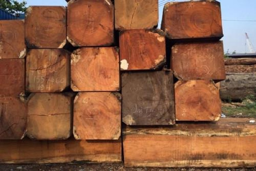 Le Cameroun est le premier exportateur de bois sciés vers l'Union Européenne