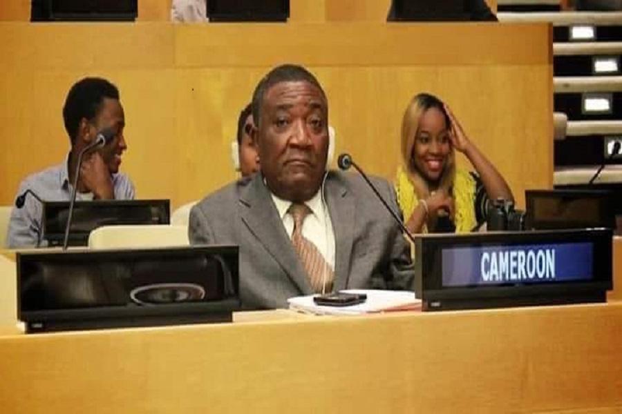 voici la déclaration de l'ambassadeur et représentant permanent du Cameroun aux Nations-Unies