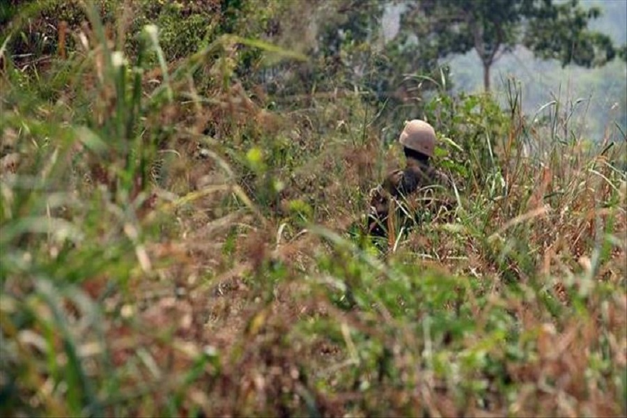 Cameroun-crise anglophone : 15 villages ont enregistré des attaques dans la ville de Dschang.