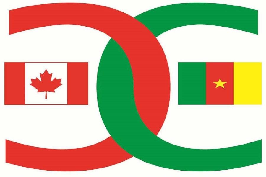 Coopération : Le Canada propose son aide au Cameroun pour le développement du secteur Eau et Energie