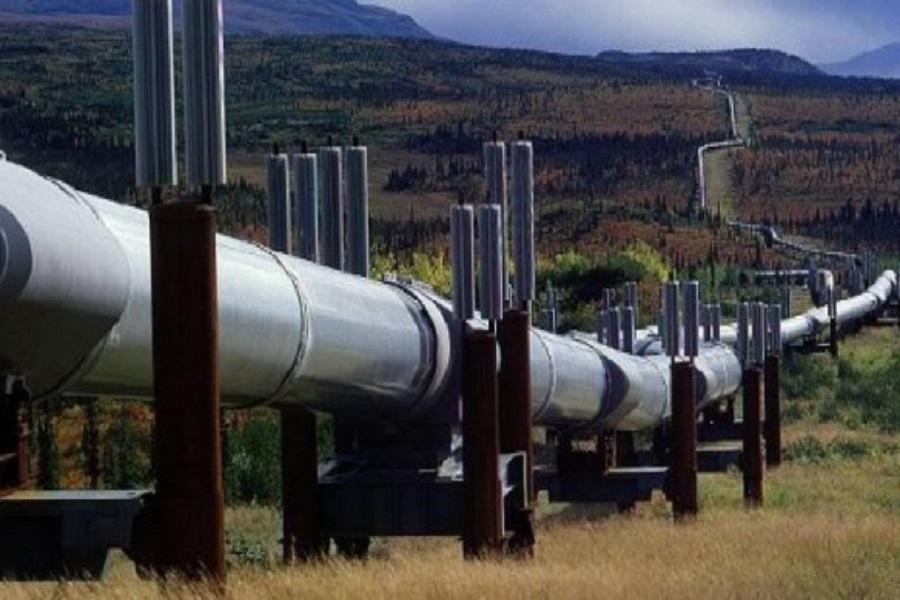 Pipeline Tchad-Cameroun : des recettes considérables pour le Cameroun