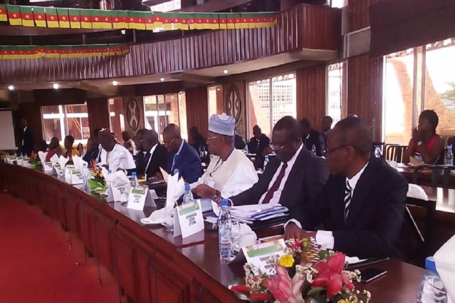 Cameroun-gestion sociale : une formation en leadership conduite par des experts américains.