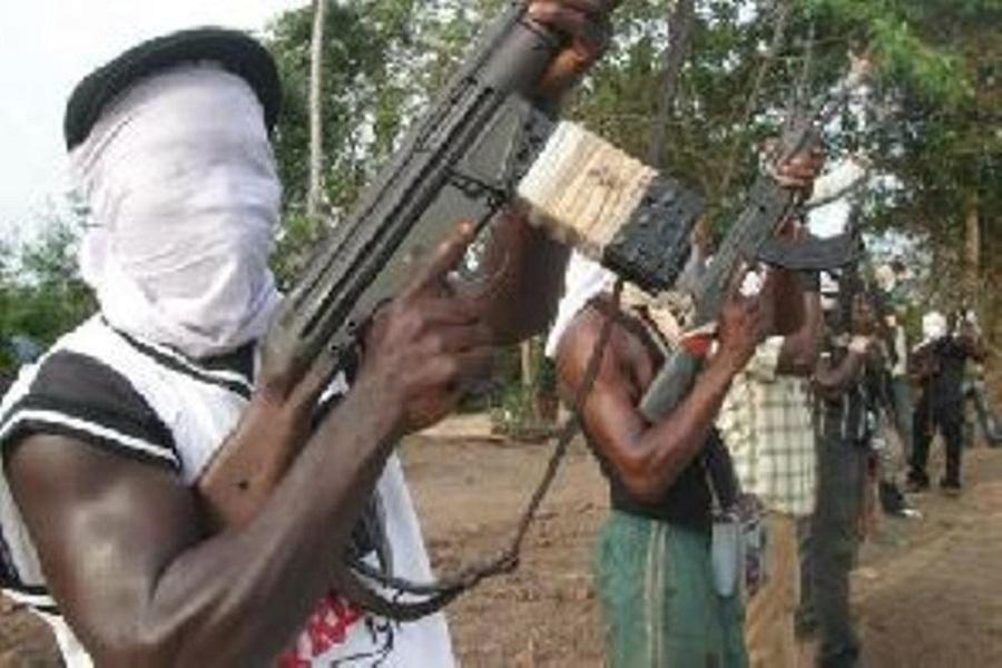 Cameroun : le parlement américain s'en prend aux séparatistes « Ambazoniens »