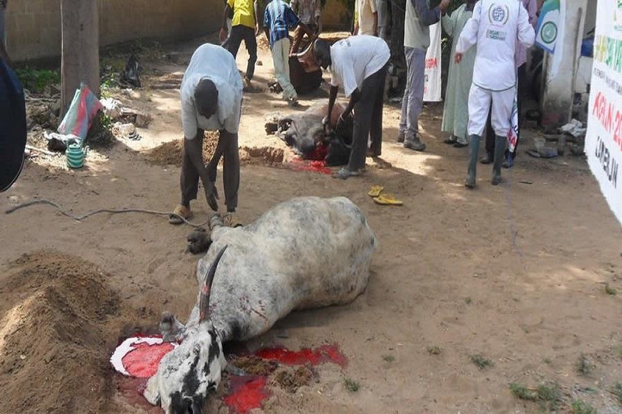 Cameroun-fête du Tabaski : plus de confusion cette fois ci, la fête confirmée pour ce dimanche 11 août
